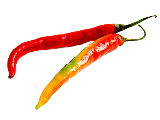Slim, fresh red chiles